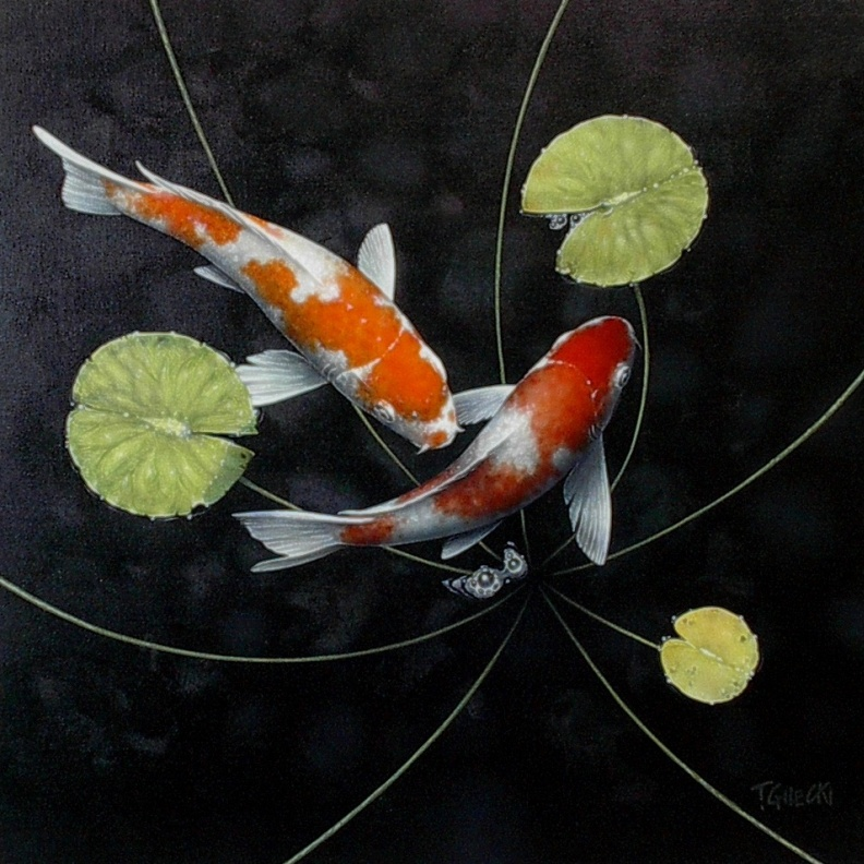 two koi fish in a dark pond