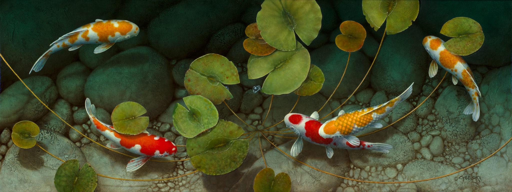 image of 5 koi fish