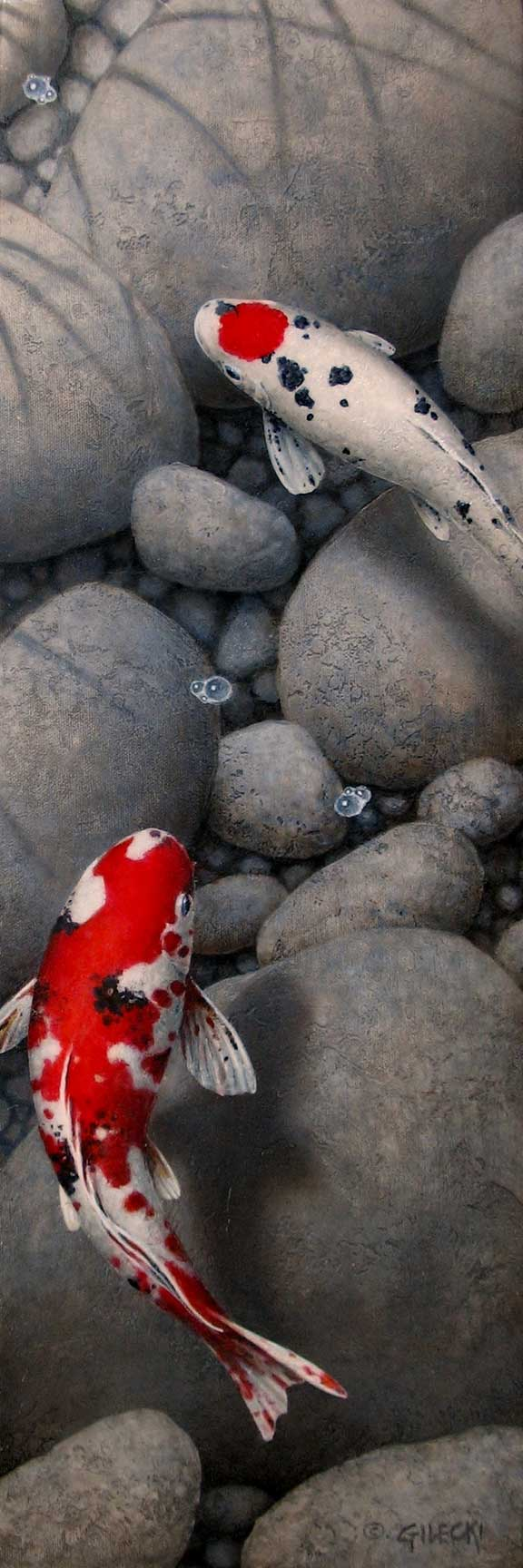 painting og Koi fish on gray rocksey