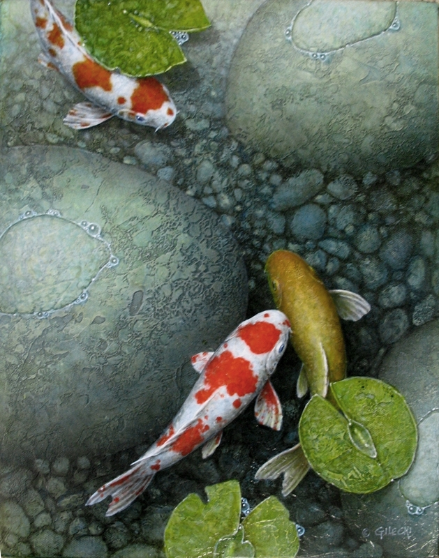 koi fish in grey blue pond