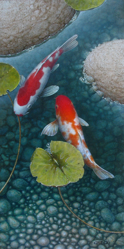 Two koi fish in a blue pond