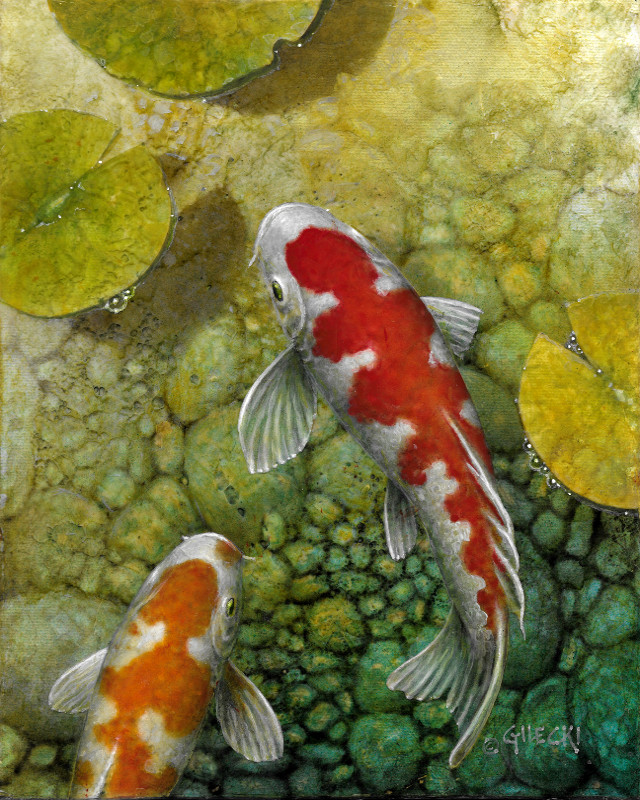 Sun lit koi fish in a pond